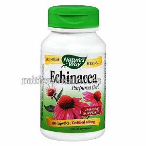 Echinacea 380 mg Nature's Way 100 capsulas